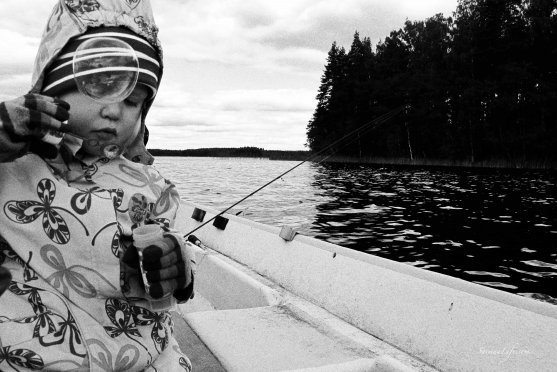 family-fishing-perch-in-finland-7