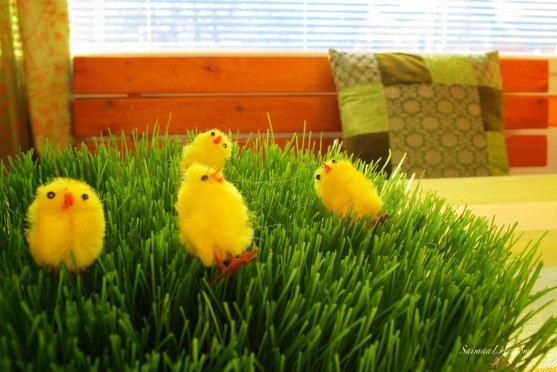 easter-grass