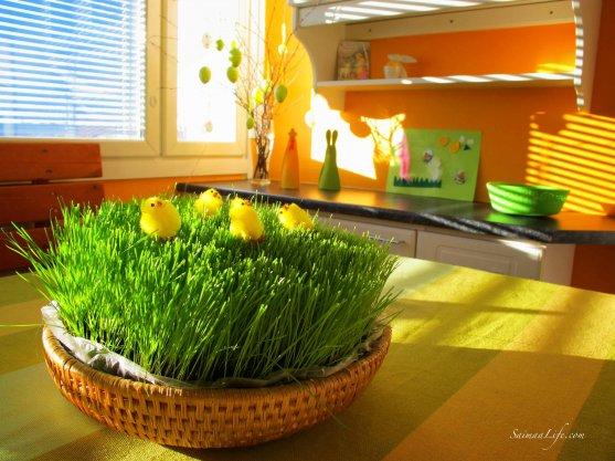 easter-kitchen