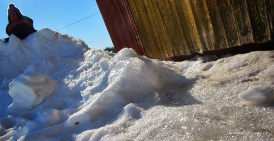 sunny-day-snow-melting