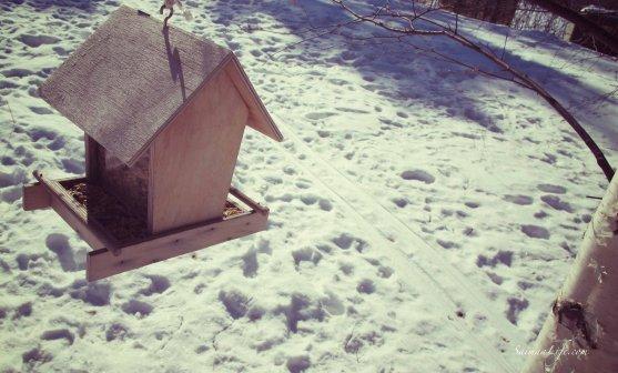 winter-finnish-birdhouse