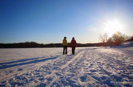 winter-day-finland-beautiful