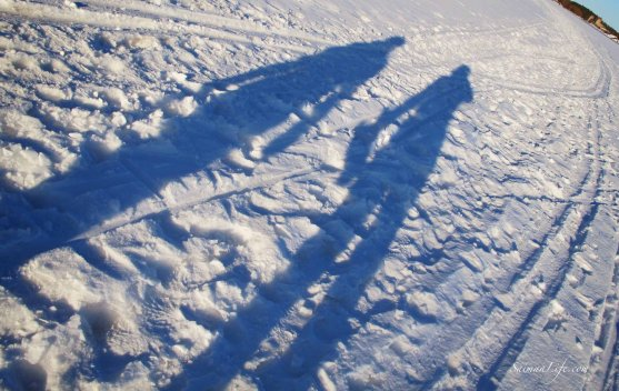 winter-day-shadows