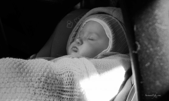 baby girl sleeping at the back seat of car black and white picture