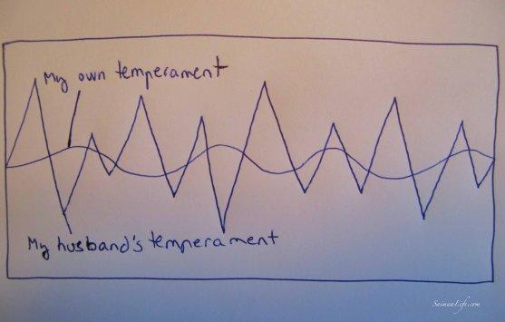 couple-temperament