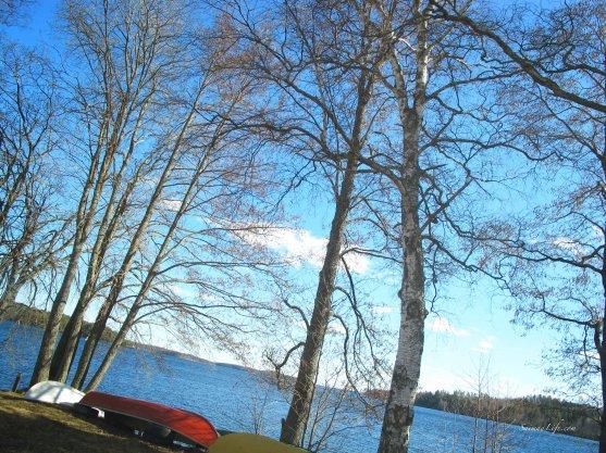 spring time lake view finland car window