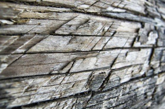 old-grey-wood
