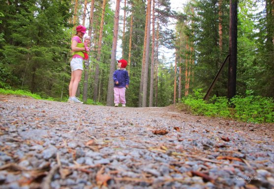 forest-jogging-track