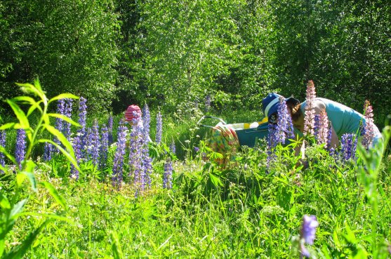 mother-and-daughters-picking-up-flowers-7