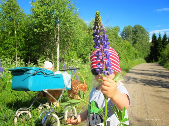mother-and-daughters-picking-up-flowers-8