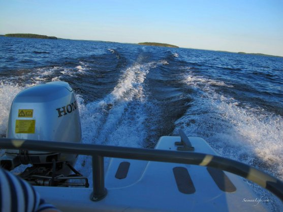 family-boating-with-speed-boat-2