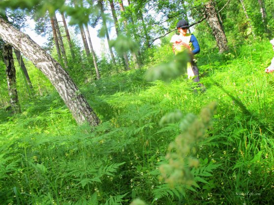 family-forest-trip-6