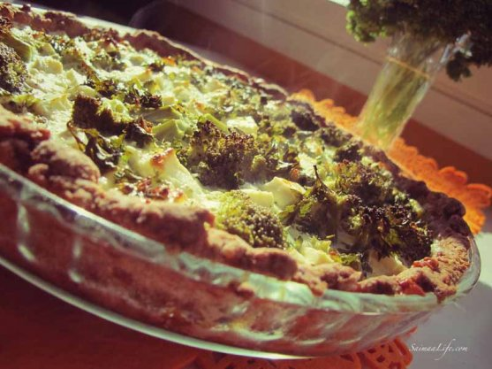 homemade-broccoli-feta-cheese-pie-4