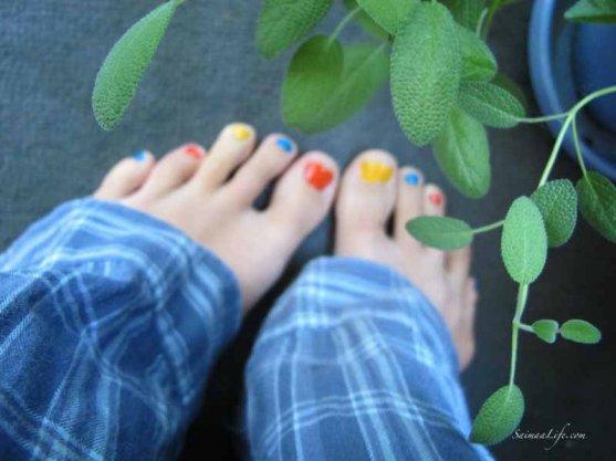 herbs-on-balcony-7