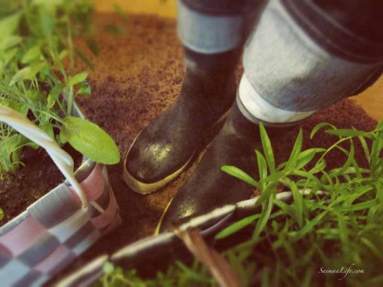 neighbour-bringing-herbs