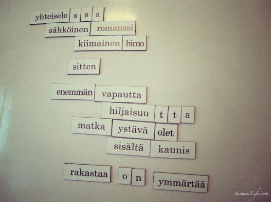 finnish-word-magnets-5