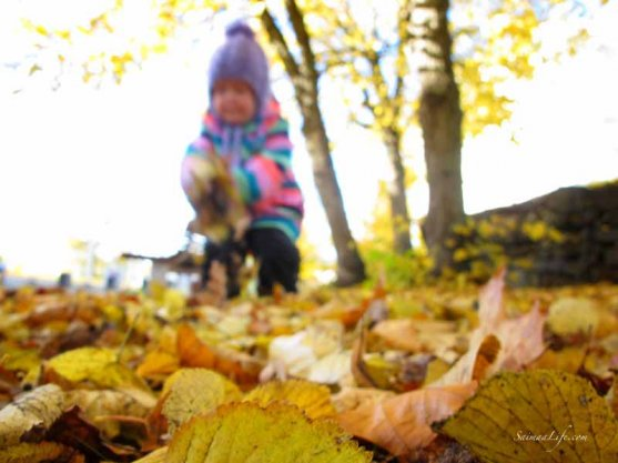 family-playing-together-with-autumn-leaves-1