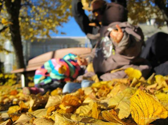 family-playing-together-with-autumn-leaves-4