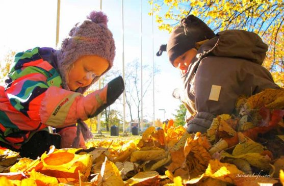 family-playing-together-with-autumn-leaves-7
