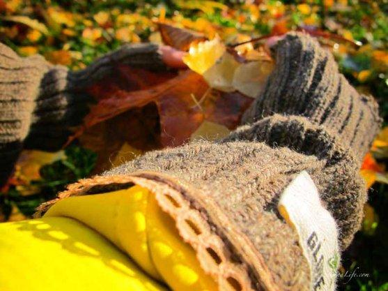 globe-hope-gloves-in-autumn