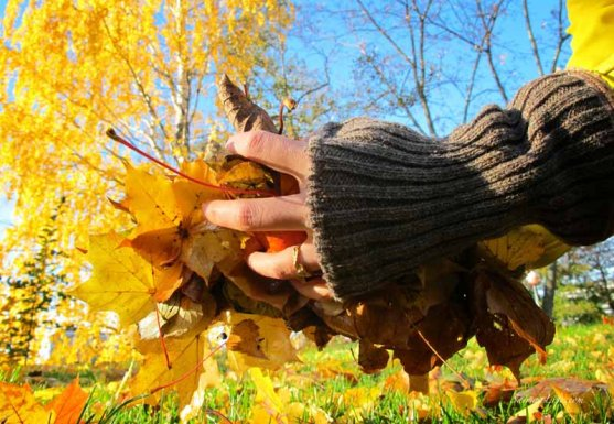 globe-hope-gloves