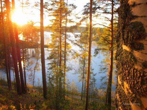 punkaharju-ridge-area-in-finland-in-beautiful-autumn-day-2