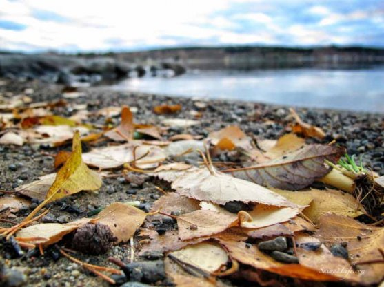 autumn-by-finnish-lake-2