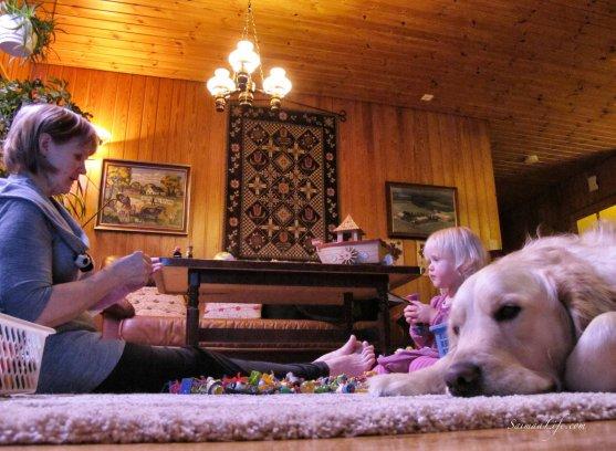 grandmother-child-dog-playing