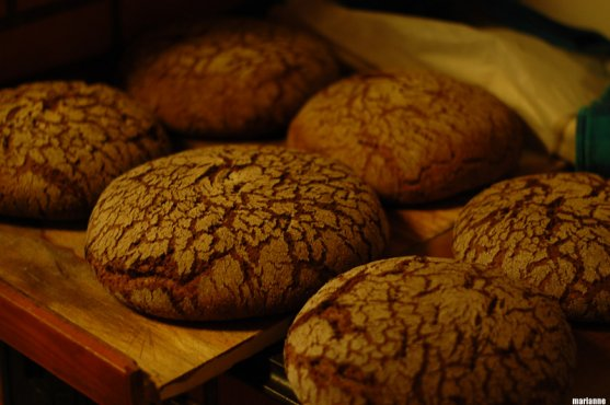 recipe-for-baking-traditional-finnish-rye-bread-33