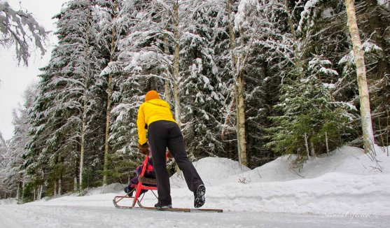 winter-kicksledging