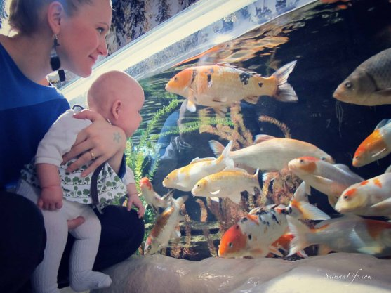 sealife-baby-mother