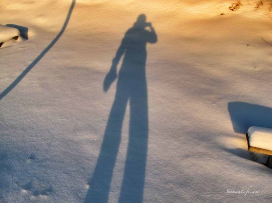 A shadow of a photographer on snow