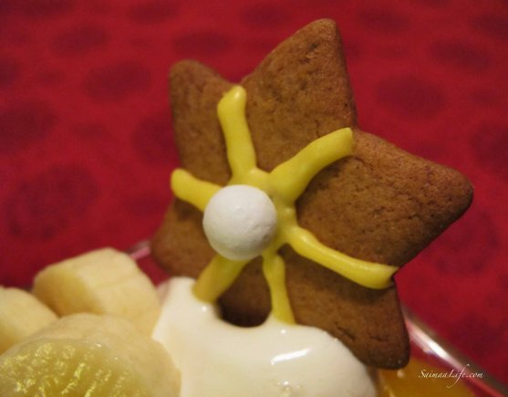 christmas-gingerbread-cookie