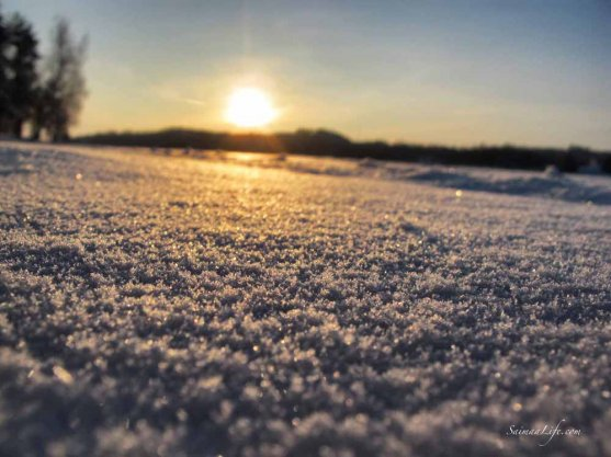 Sun setting and snow sparkling