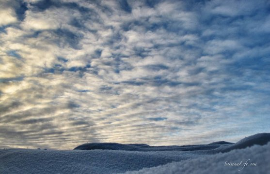 finnish-winter-sky