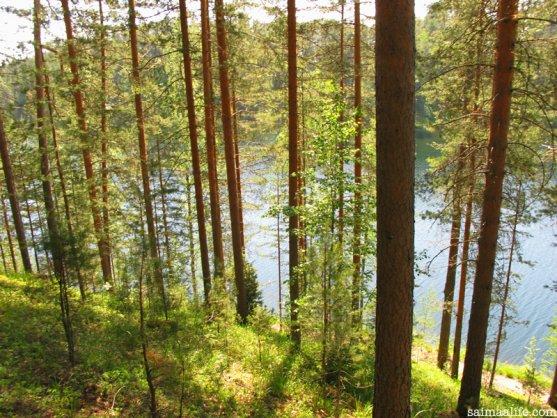 finnish-national-landscape