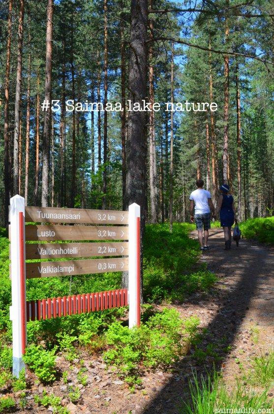 the-beginning-of-nature-trail-in-kruunupuisto