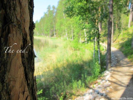 walking-path-in-punkaharju-ridge-area