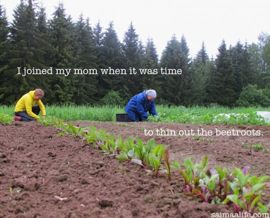 mother-and-daughter-working-togethr-on-vegetable-garden