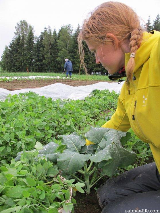 mother-weeding-vegetable-garden