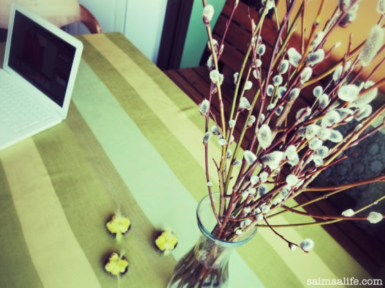 finnish-catkins-on-kitchen-table-simple-natural-wellbeing