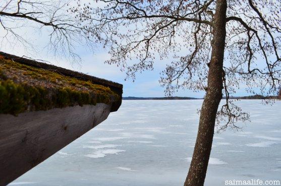 lake-puruvesi-in-spring