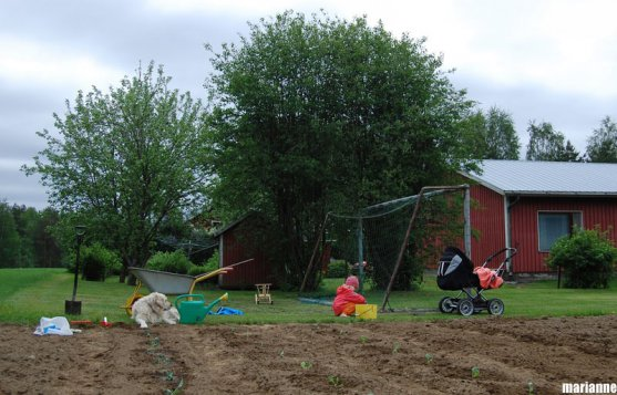 child-playing-next-to-vegetable-garden