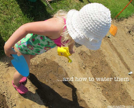 child-watering-vegetable-garden
