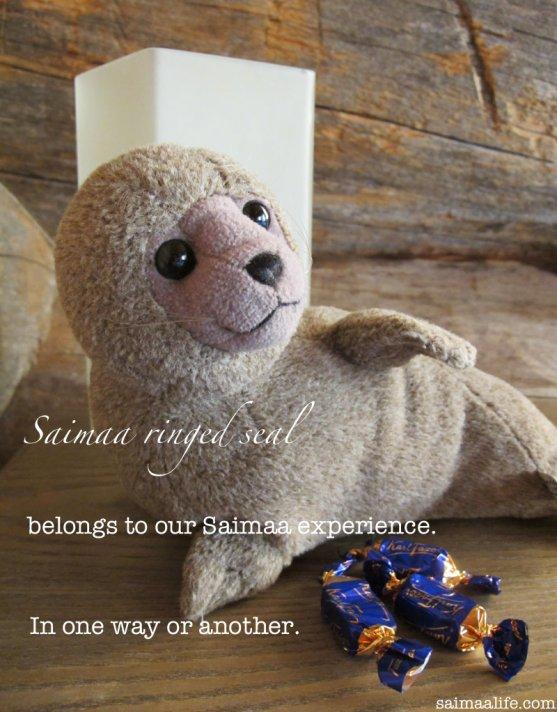 saimaa-ringed-seal-finnish-fazer-chocolate