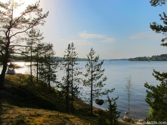 finnish-lake-nature-natural-wellbeing