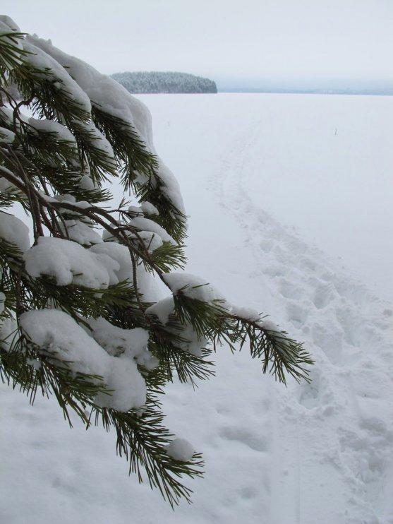 winter-finnish-lake-nature-scenery