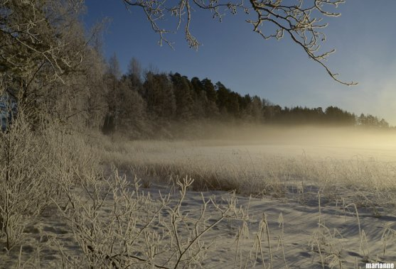 winter-lake-nature