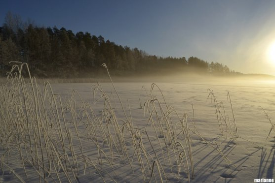winter-sunrise-on-lake