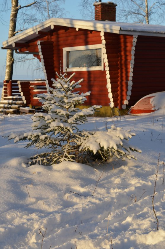 finnish-lakeside-cottage-in-winter